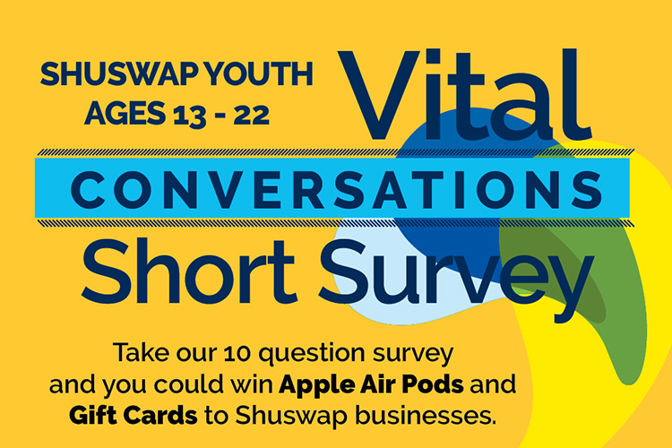Vital Conversations Short Survey